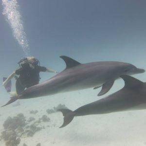 Plażowanie nurkowanie w Hurghadzie